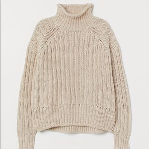 NWT H&M Ribbed Turtleneck Sweater